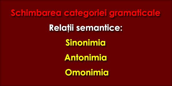 Schimbarea categoriei gramaticale, Relaţii semantice: Sinonimia, Antonimia, Omonimia