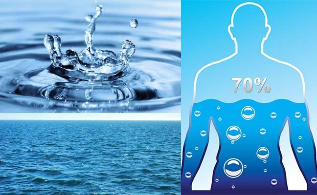 Factorii hidrologici (Apa, Molecula de apă, Rolurile apei, Acţiunile apei)